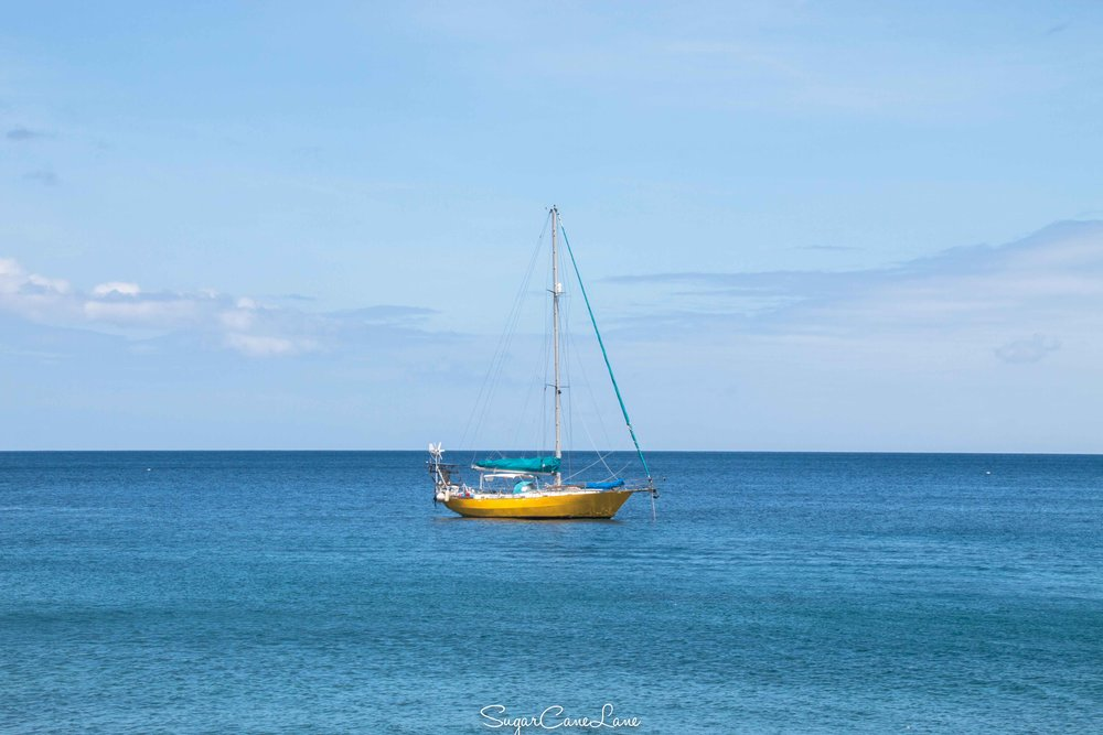 martinique_blue-sea_2628.jpg