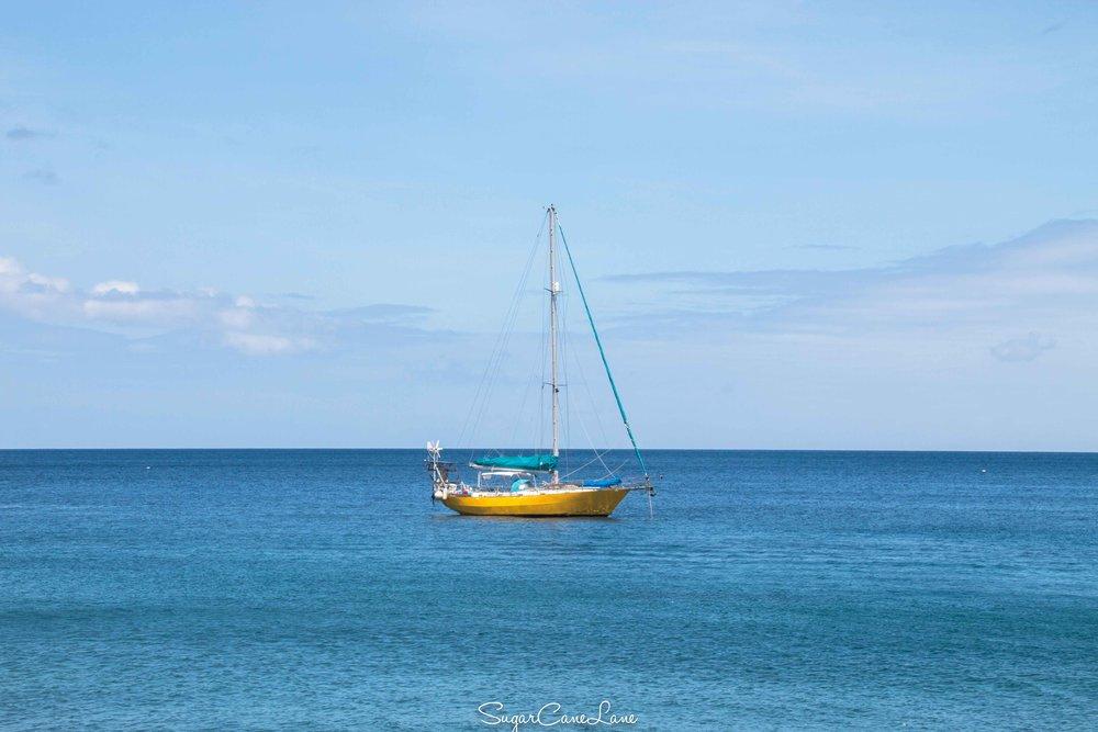 Martinique, voilier sur mer bleue