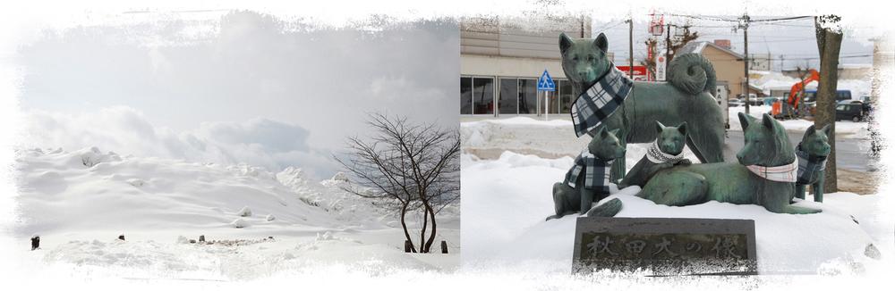 EEN sneeuwige WINTER IN ODATE, de geboorteplaats van de japanse akita inu.