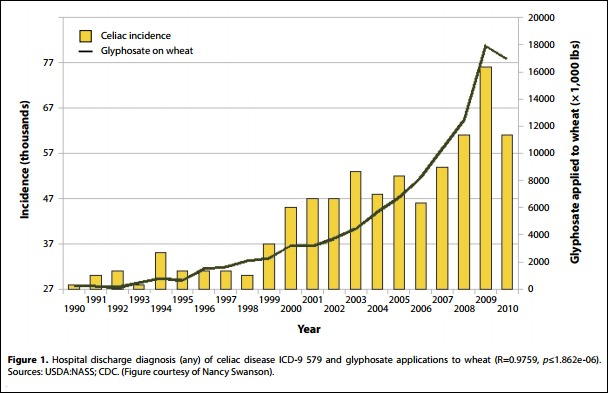 Graph shows correlation between Coeliac Disease incidence and Glysophate usage on wheat in the US. © A.Samsel & S.Seneff 2013