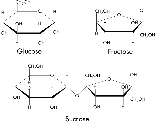 Glucose, Fructose & Sucrose