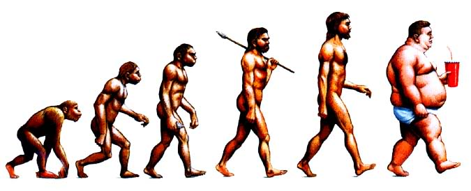 Evolution of the human diet