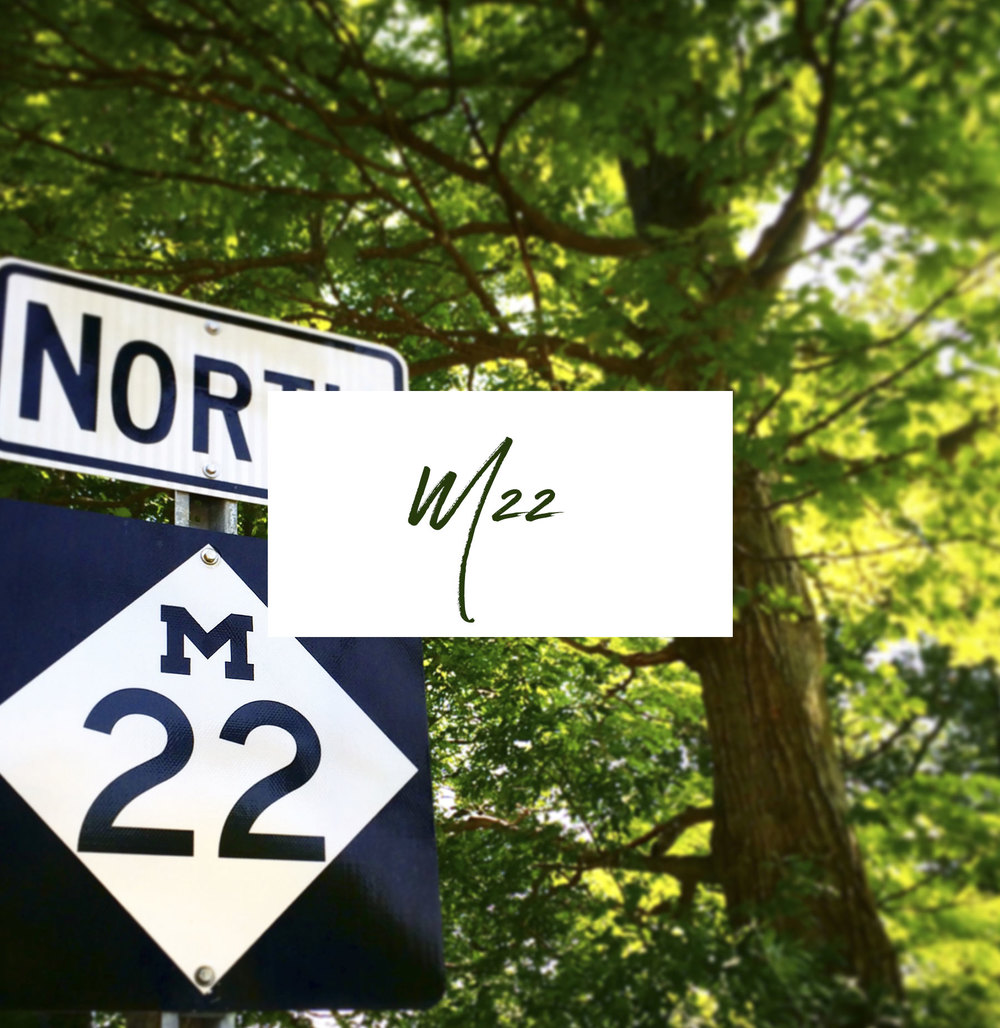M22   FOLLOWS THE LAKE MICHIGAN SHORE FOR ALMOST 120 MILES OF THE LEELANAU PENINSULA COAST. IT'S A BEAUTIFUL DRIVE THROUGH A TUNNEL OF TREES WITH VIEWS OF THE LAKE AND CUTE TOWNS SCATTERED ALL ALONG.