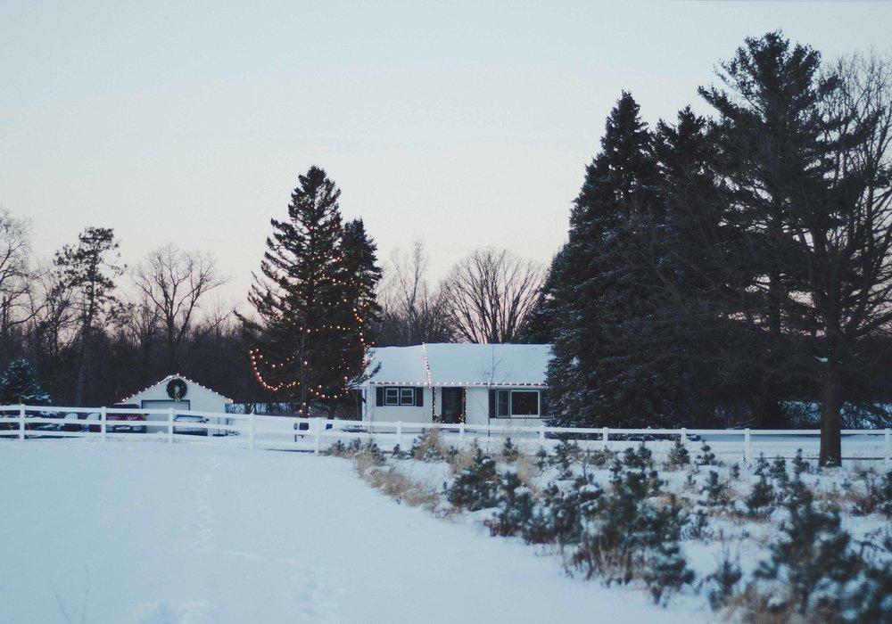 snow-38.jpg