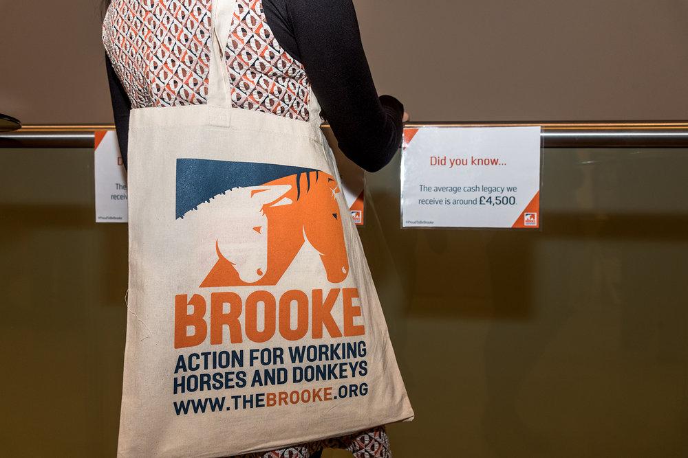 Brooke 3.jpg