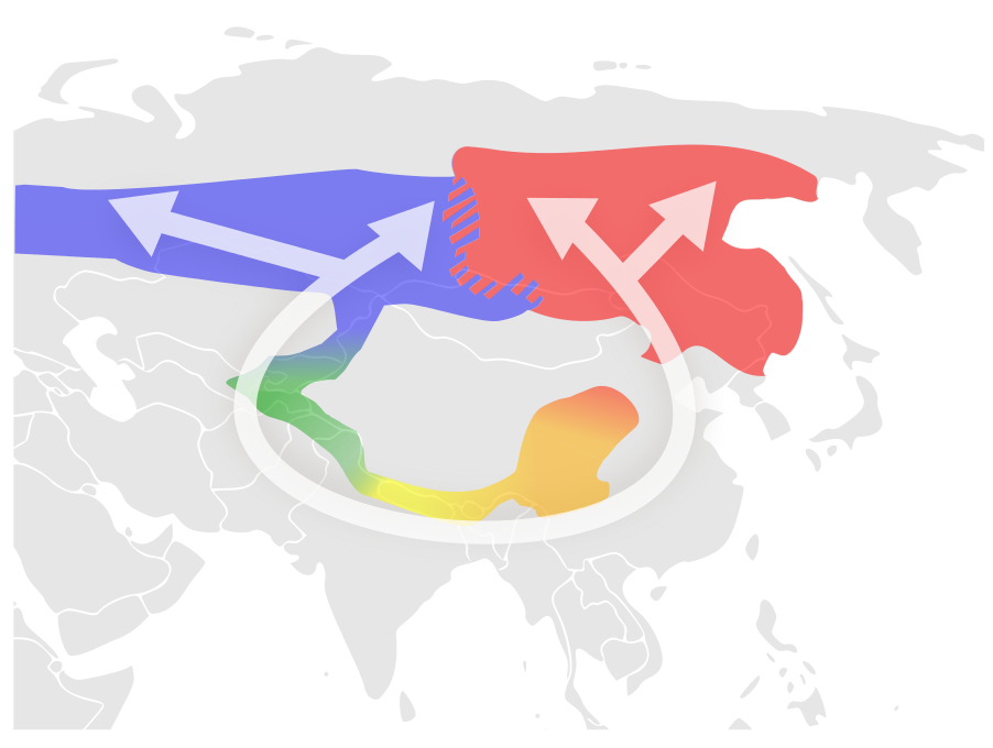 The 5 main colours here indicate the main subspecies. Blue and Red are unable to breed.