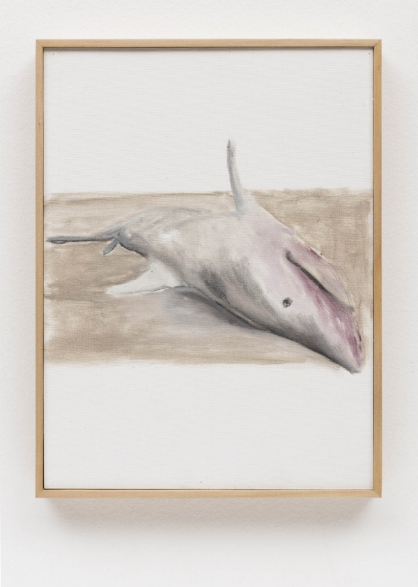Rodrigo Bivar   Tubarão, 2014  óleo s/ tela, 32 x 24 cm   Shark, 2014  oil on canvas, 12 ⅝  x 9 7/16 cm