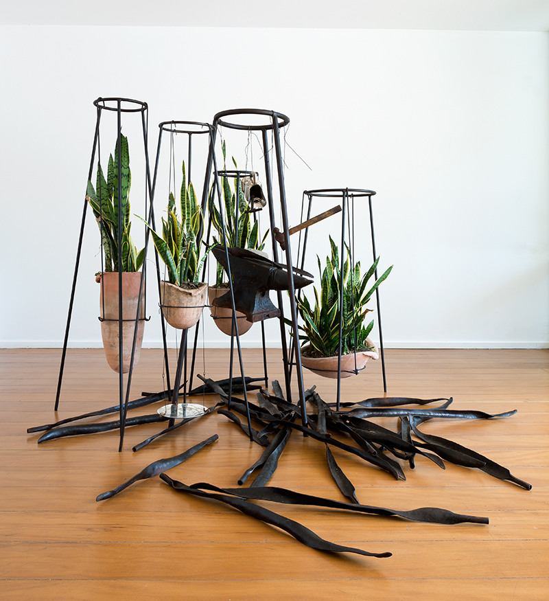 Tunga,  Sem título  |  Untitled,  2015, ferro, cerâmica,  Sansevieria trifasciata , aço, madeira, vidro, cristal | i ron, ceramics, Sansevieria trifasciata,steel, wood, glass, crystal , dimensões variáveis |  variable dimensions  –   Cortesia do Acervo Tunga |  Courtesy of the Estate of Tunga  –   Foto |  Photo:  Filippo Bamberghi
