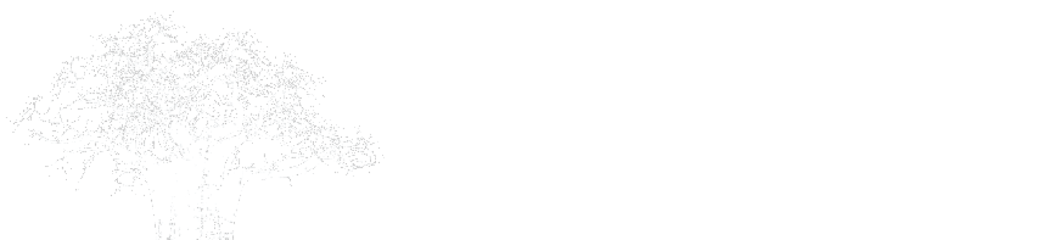 Pan African Capital Group