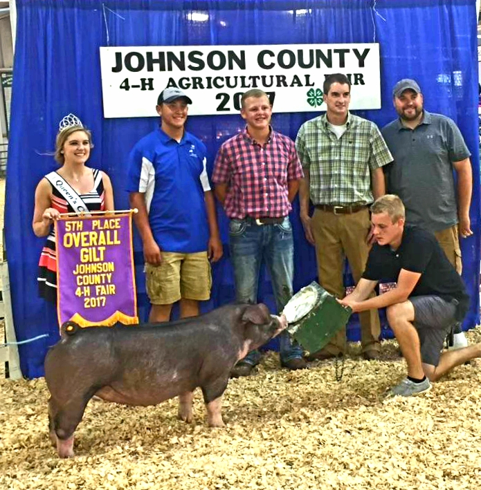 Champion Poland Gilt & 5th Overall Breeds