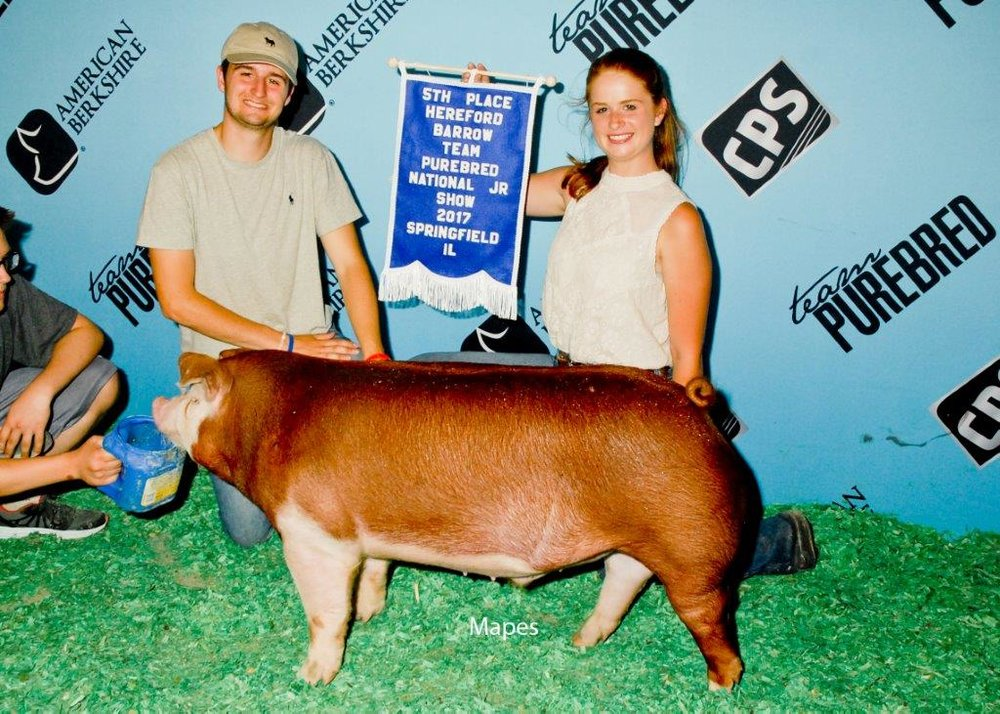 5th Overall Hereford Barrow Team Purebred NJS.jpg
