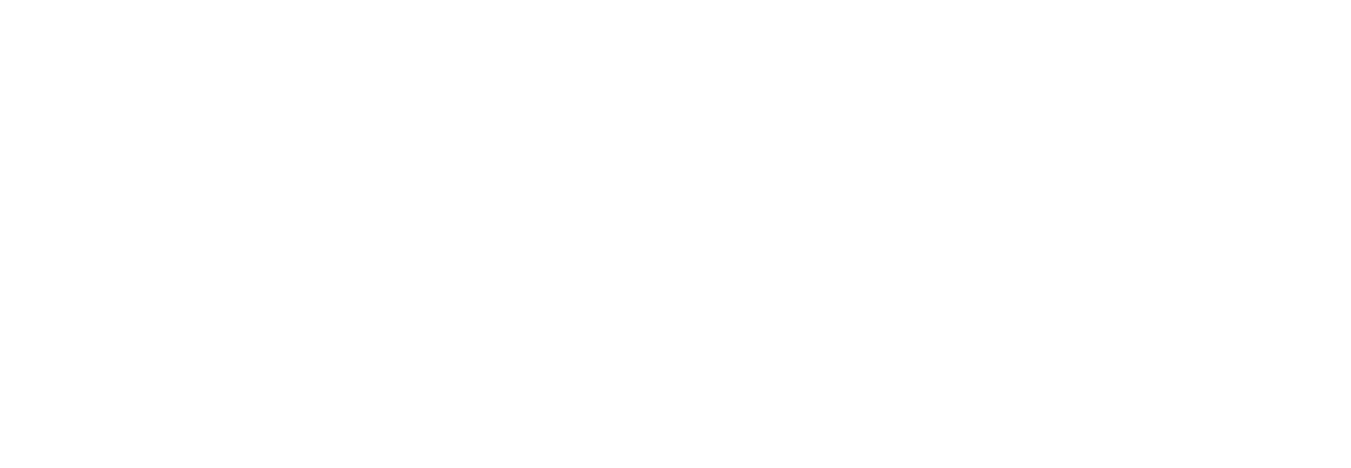 DIGITAL INDUSTRY PROGRAM