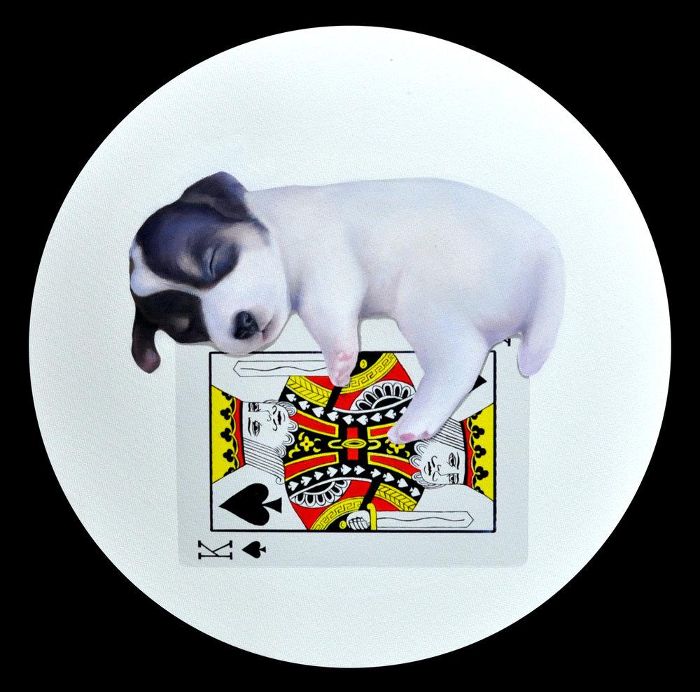 Card tower-sleeping dog#2_30x30cm oil on canvas 2016.JPG