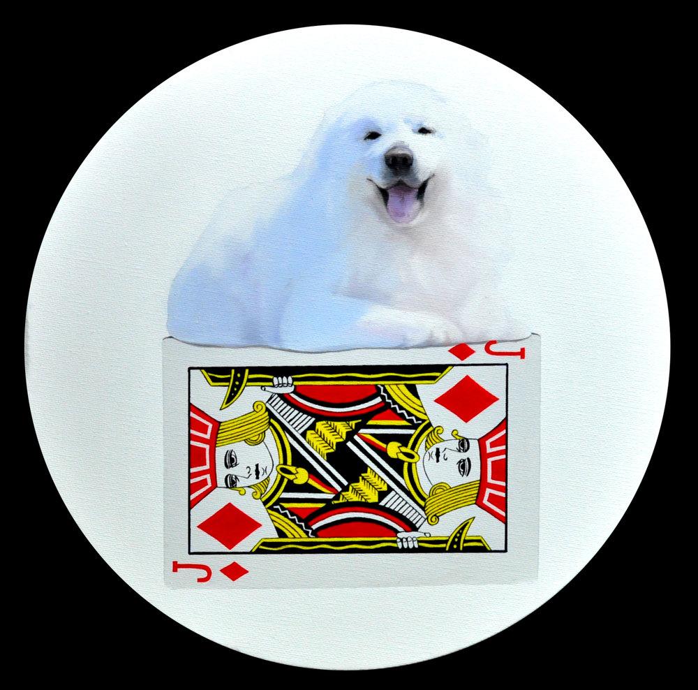 Card tower-dog30x30cm oil on canvas 2016.JPG