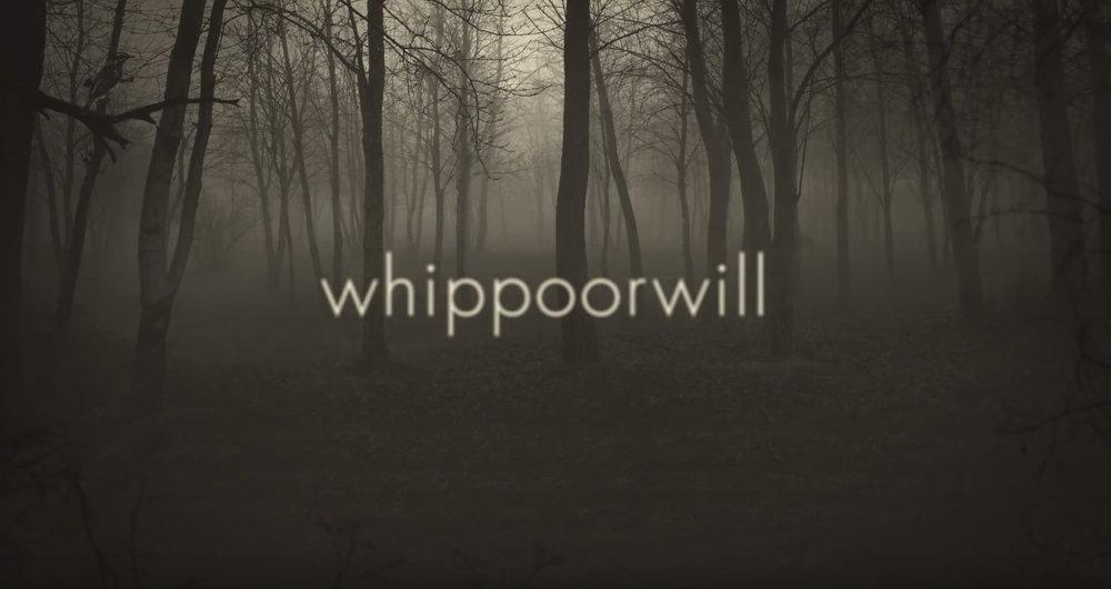 Clock Opera | 'Whippoorwill' | 2016