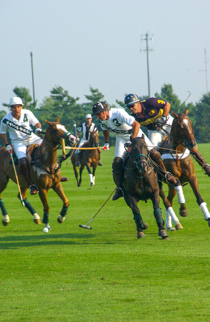 hamptonspolo_4286.jpg