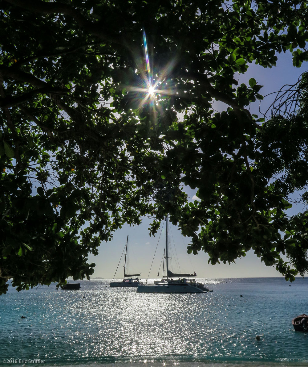 Yachts in Mustique