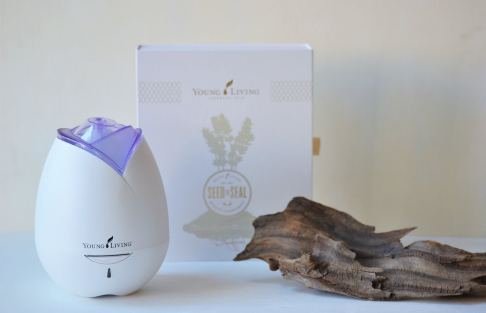 Essential Oils 101 - Making Room for Peace 08.JPG