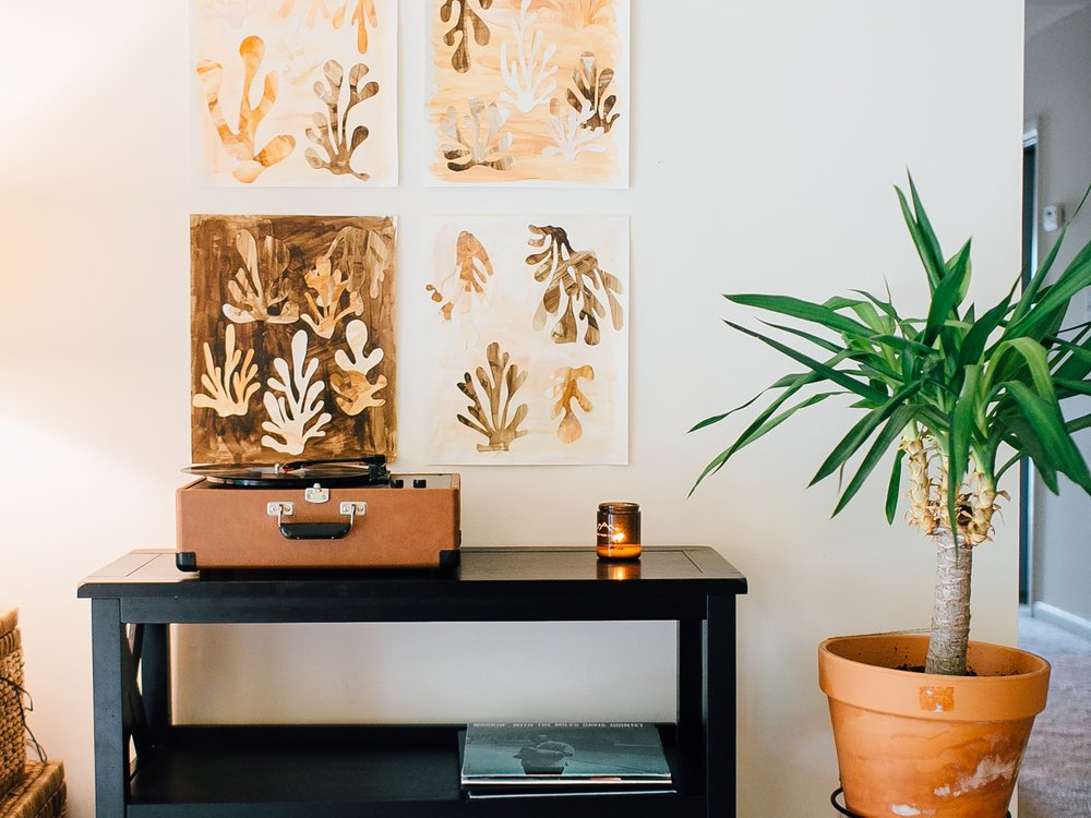 Making Room for Peace | Indoor Air Purifying Plants