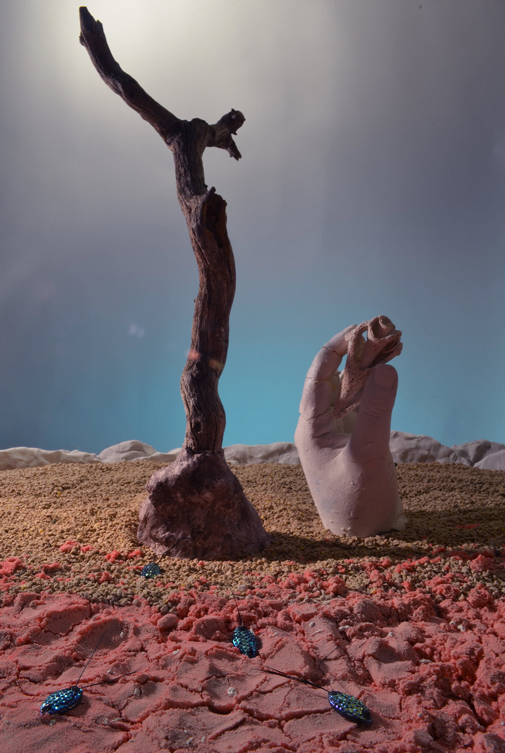 Uncharted Territories, Desert, 2014 Mixed media diorama