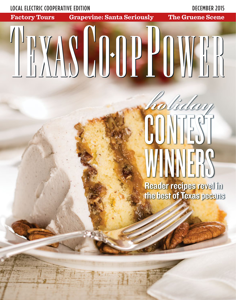 Texas Co-op Power • December 2015 - tcp1512.pdf.jpg