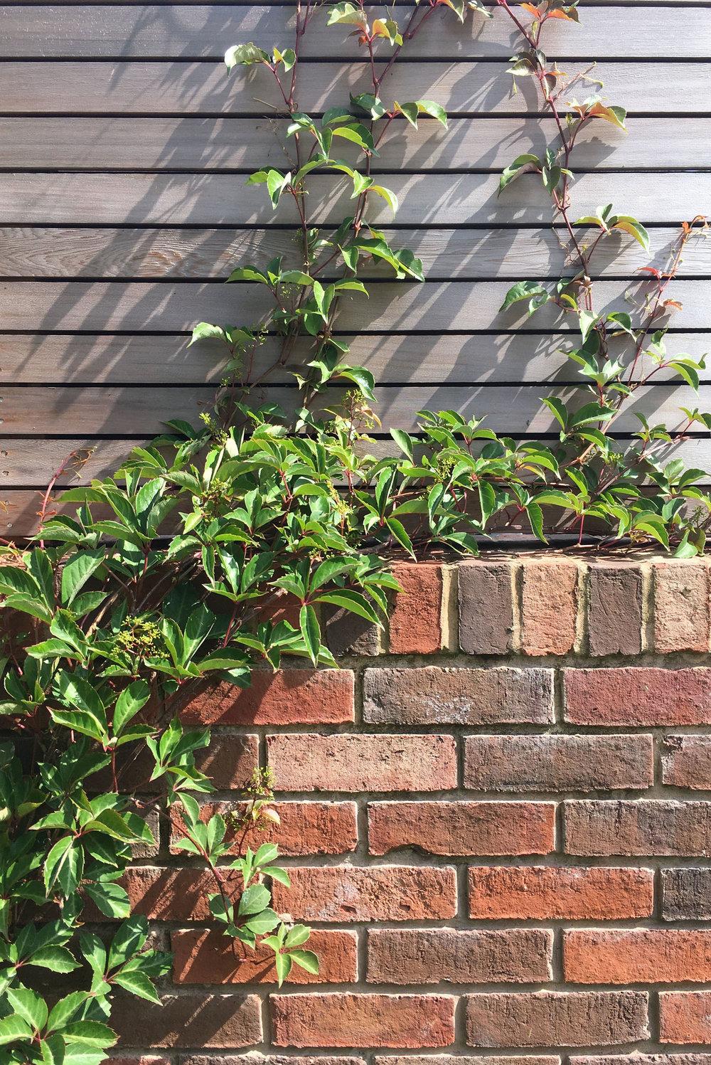 Garden living manchester
