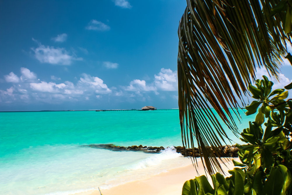Maldives-9534.jpg
