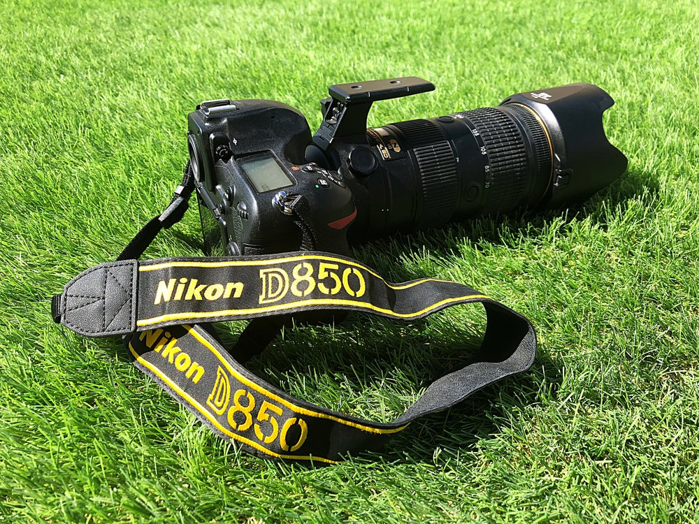 The Nikon D850 and Nikkor 70-200 AF-S f2.8 VR FL ED, a really great versatile set up for photographing wildlife.