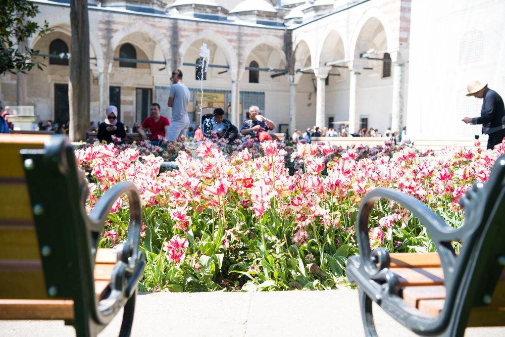 thetravelhub_istanbul_topkapi palace-2686.jpg