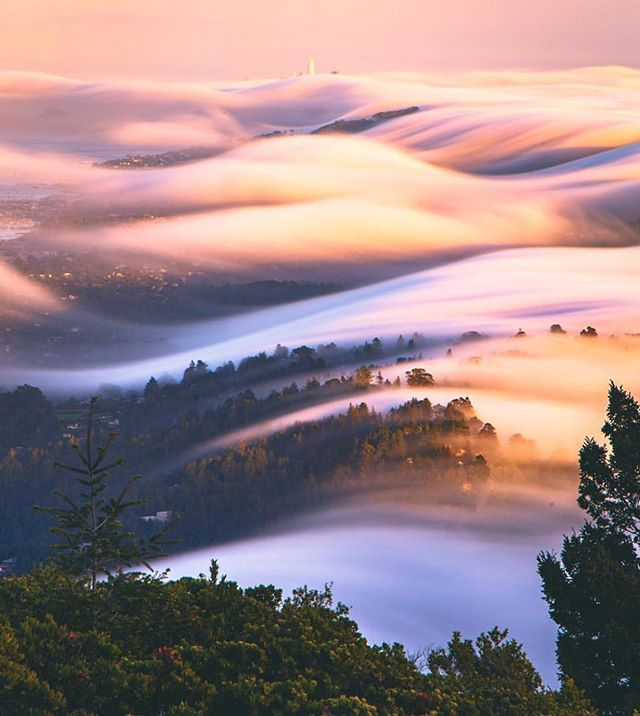 CATCHING WAVES 🌊  ____________________________________  Mt Tamalpais - San Francisco, USA 🇺🇸 ____________________________________ 📷 courtesy of @codymayer22 ℹ️ courtesy of @andymtravel . 📌 Tag @the_travel_hub or #thetravelhub to have photos featured  ____________________________________ Love this dreamy evening snap from @codymayer22. Watching the waves of cloud roll in over San Francisco is something everyone should do at least once!  Something fun to do is take an afternoon bike ride over the bridge and then get the ferry back from Tiburon. On the way back you will likely get to watch the afternoon fog roll in over the hills!  For more stunning Cali pics, check out @codymayer22..........plenty of great examples of why you should book a late summer trip to the States' west coast! . . . #california #california_igers #californiaadventure #sanfrancisco #sanfranciscobayarea #sanfran #cloud #clouds #cloudporn #sunset #evening #travel #travelphoto #travelphotography #thetravelhub #usa