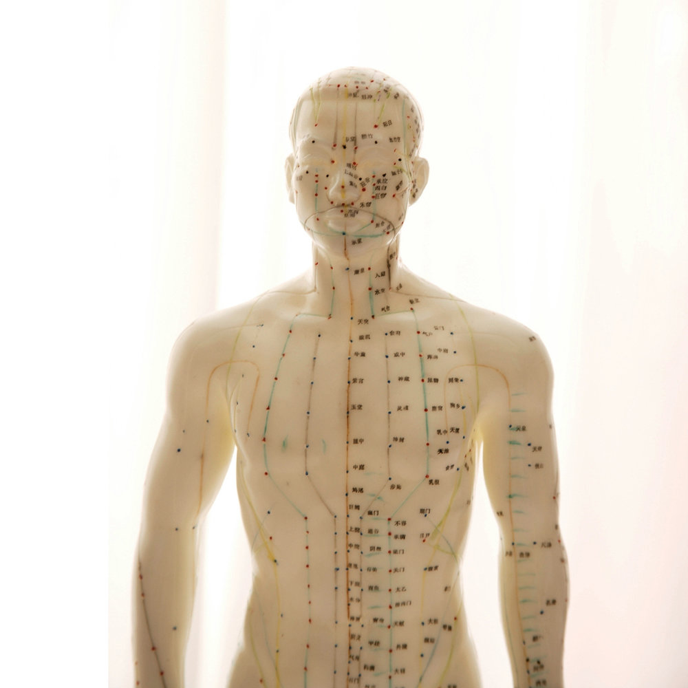 acupuncture points cropped.jpg
