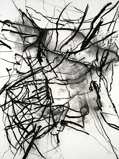 untitled (branches), 1993, charcoal on paper, 40 x 30""