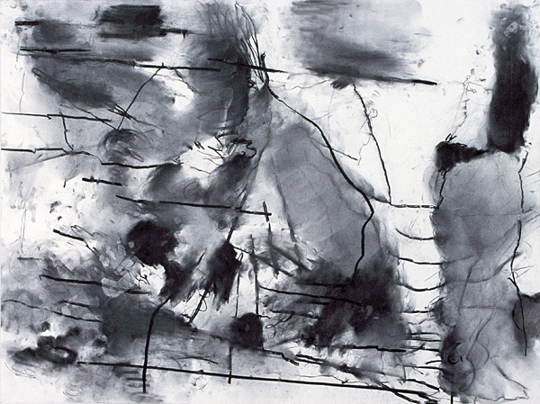 """Pasture, 2002, charcoal on paper, 30 x 40"""""""