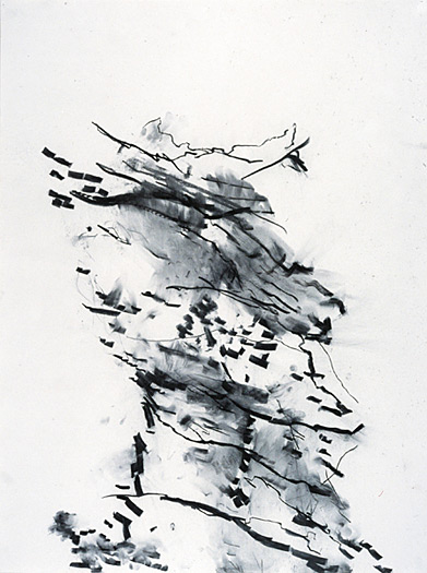 Trans-figure, 2002, charcoal on paper