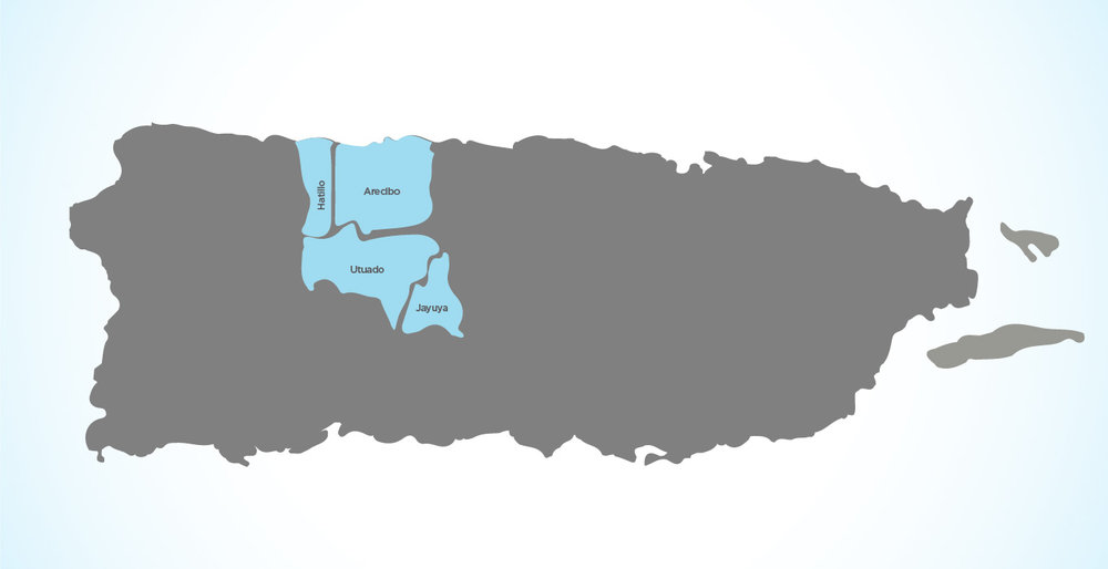 Mapa Regiones ReHace-03.jpg