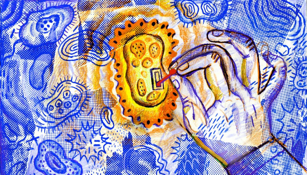 Companies Bet on Designer Bacteria as New Way to Treat Disease   Illustration by JooHee Yoon