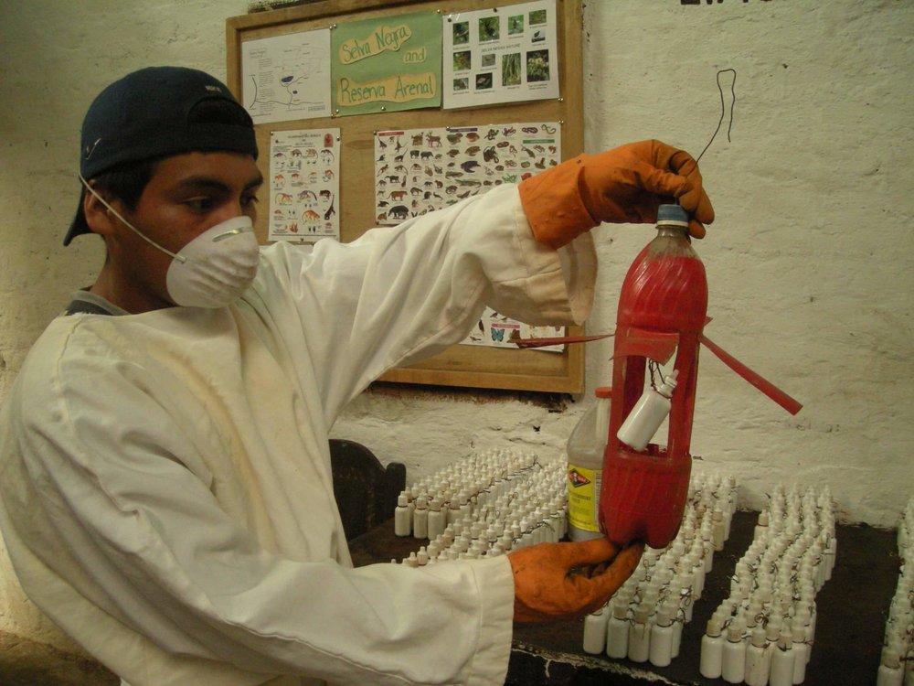 organic-lab-4.JPG