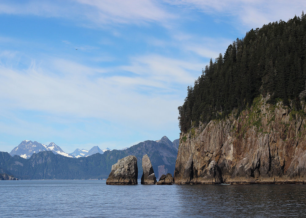 OITP Kenai Fjords Point web.jpg