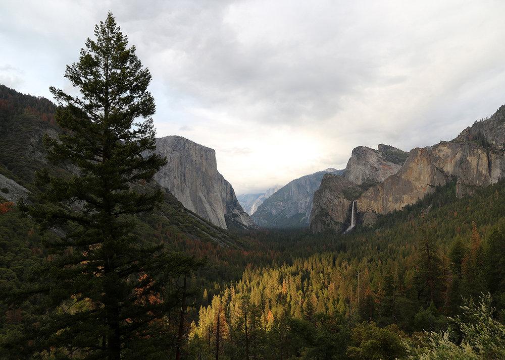 OITP Yosemite Valley web.jpg