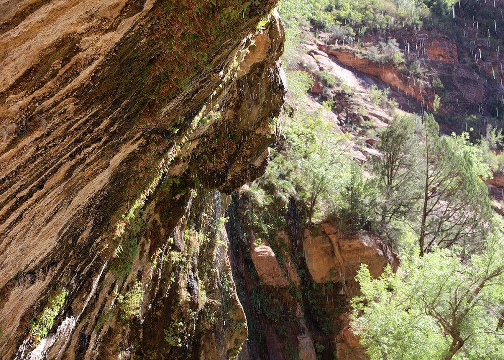 OITP Zion Weeping Rock web.jpg