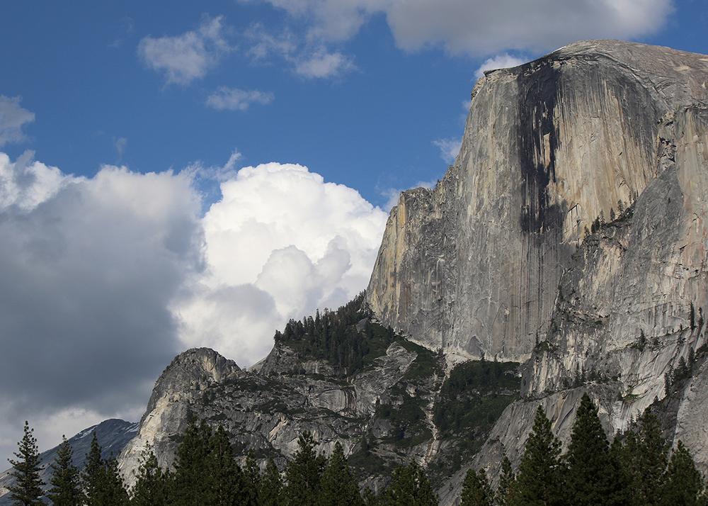 Yosemite Half Dome web.jpg