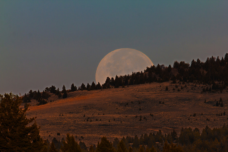 The Full Moon will be rising on Oct 16th!