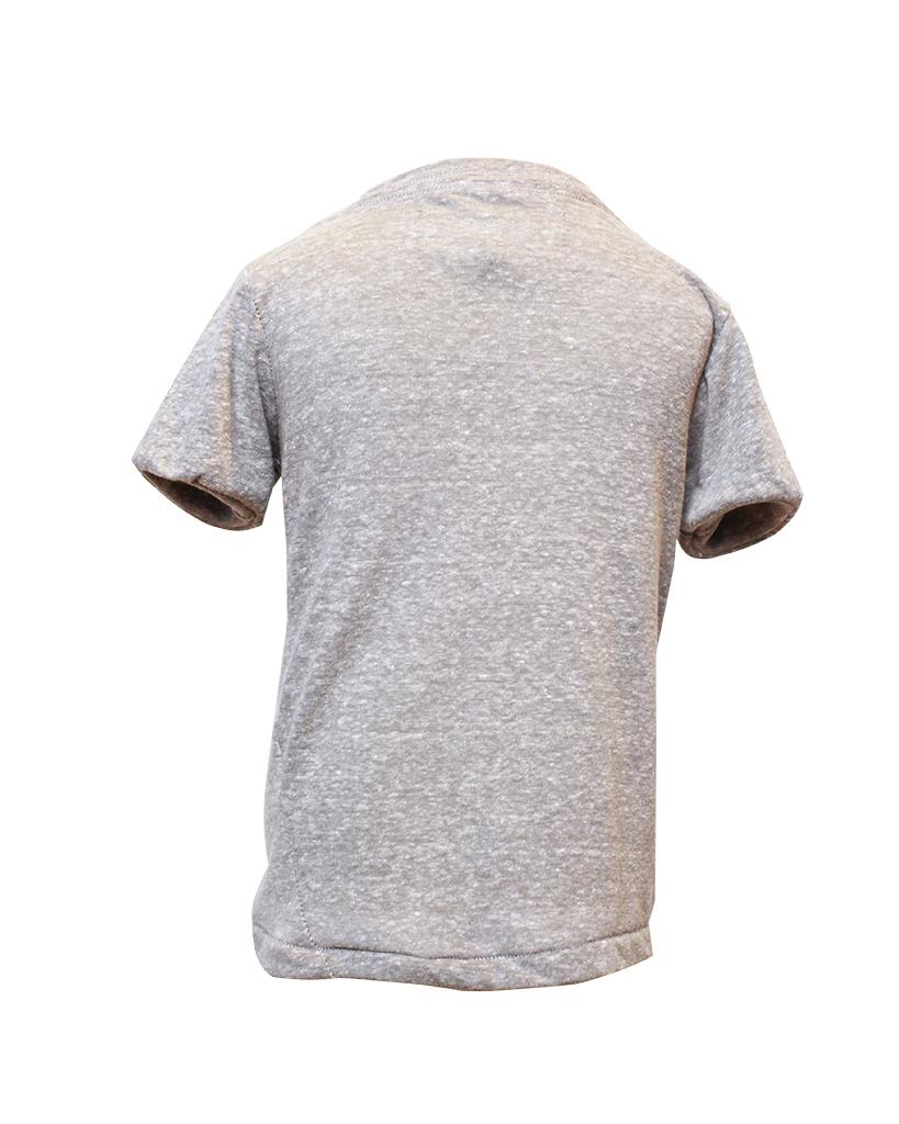 Kids Grey T-Shirt Back.jpg