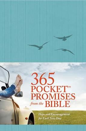 365 Pocket Promises.jpg