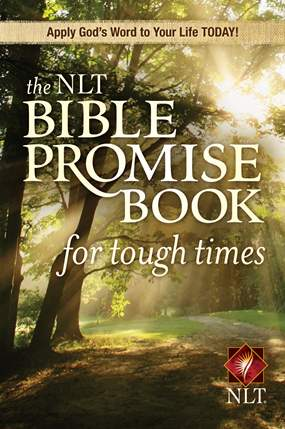 The NLT BIble Promise Book for Tough Times.jpg