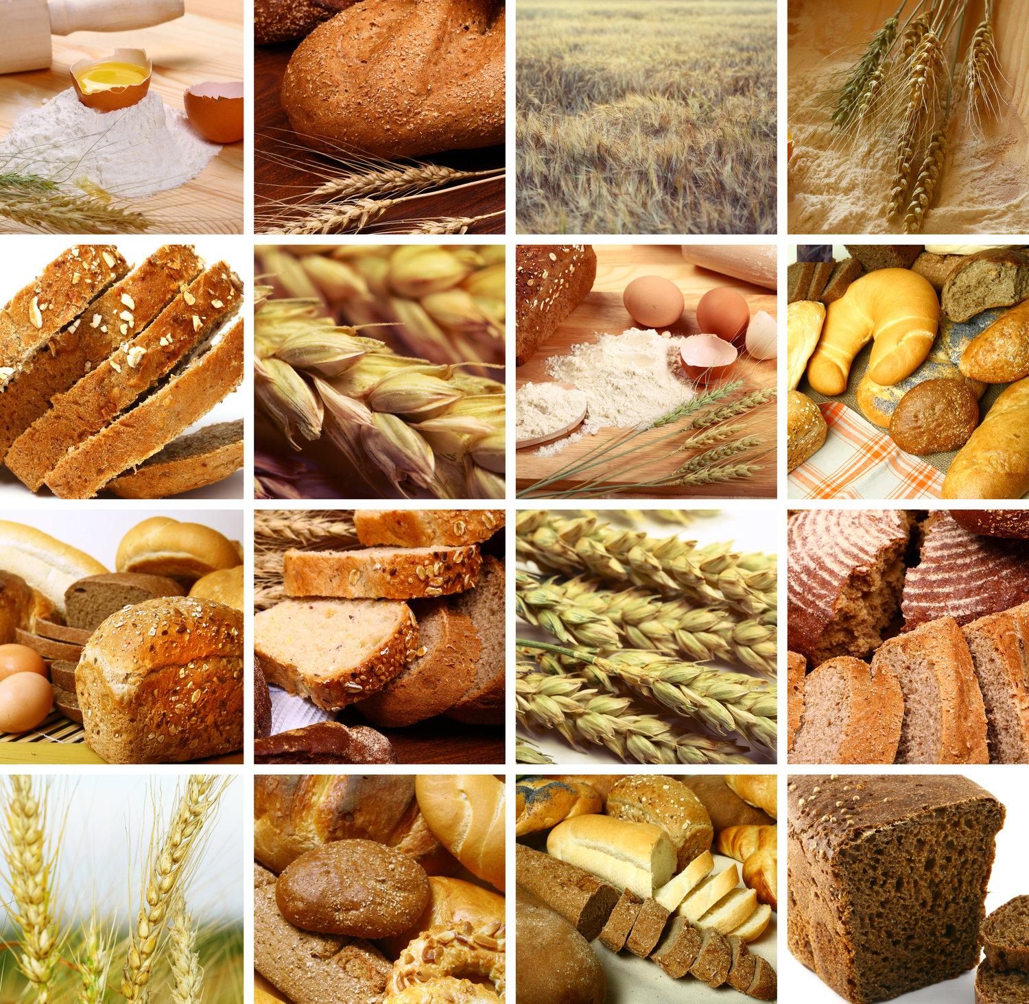 About Us European Breads Bakery