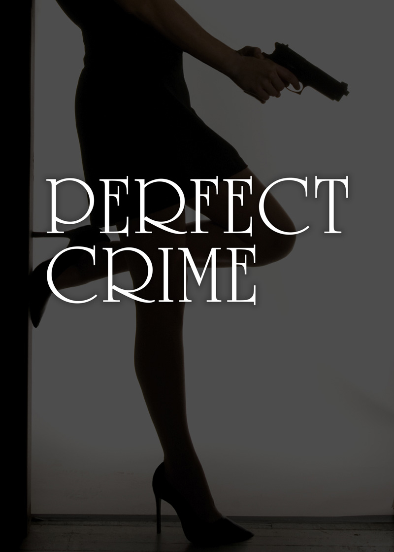 Perfect_Crime_key_art_800x1120.jpg