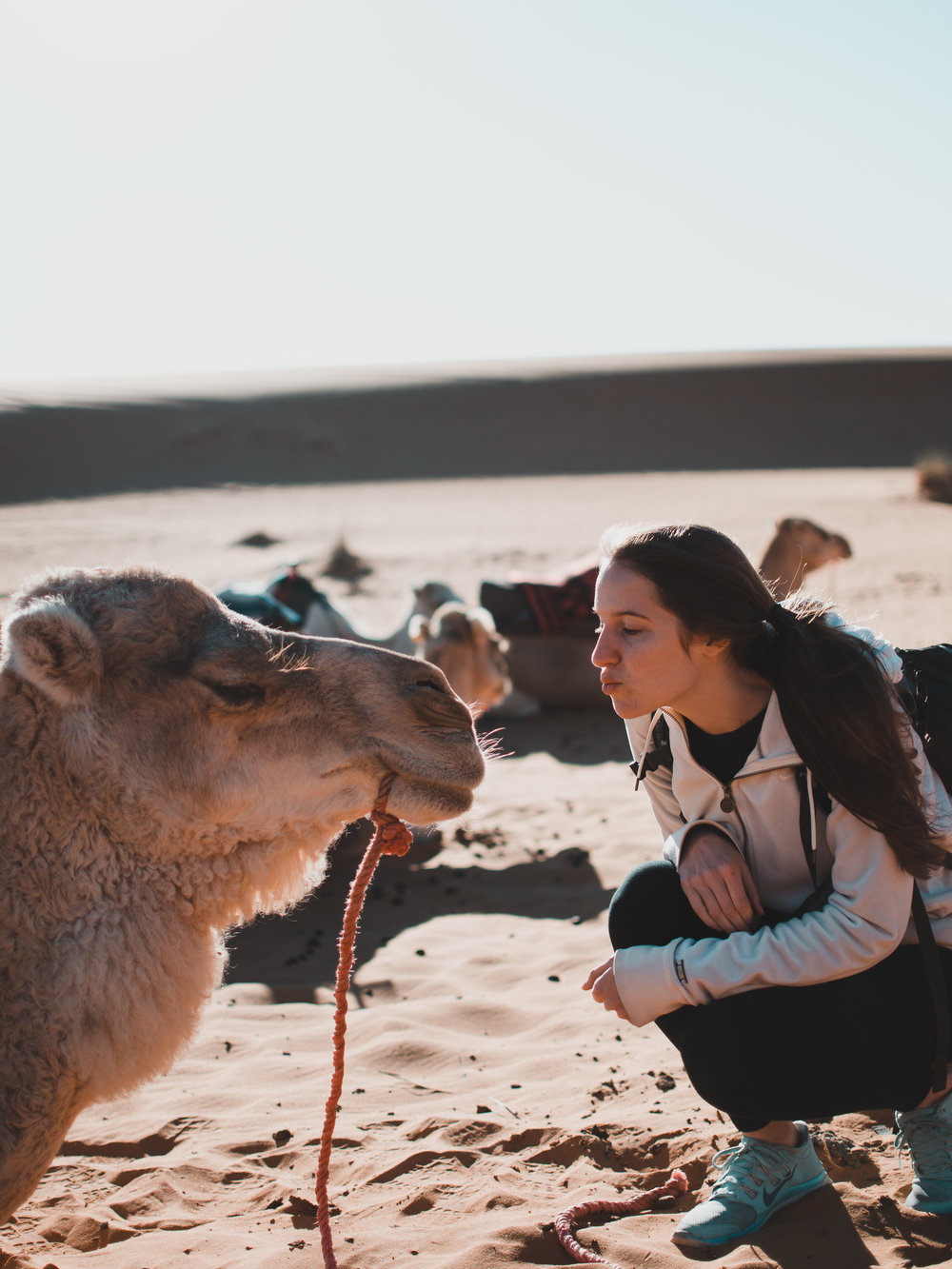 Kissing camels on our Sahara Desert tour