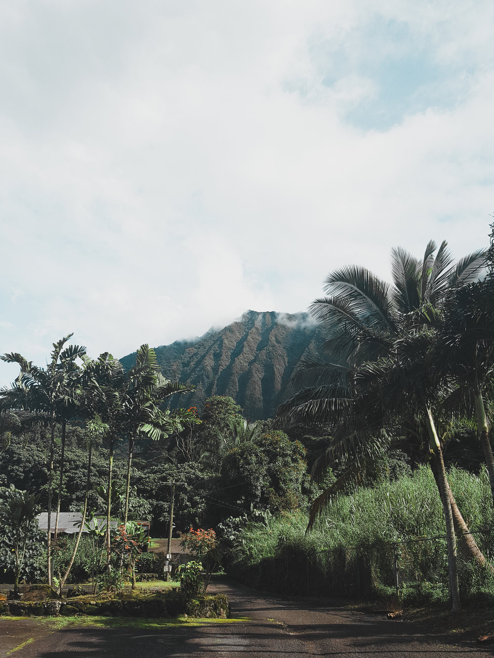Hiking is one of the top reasons to visit Oahu