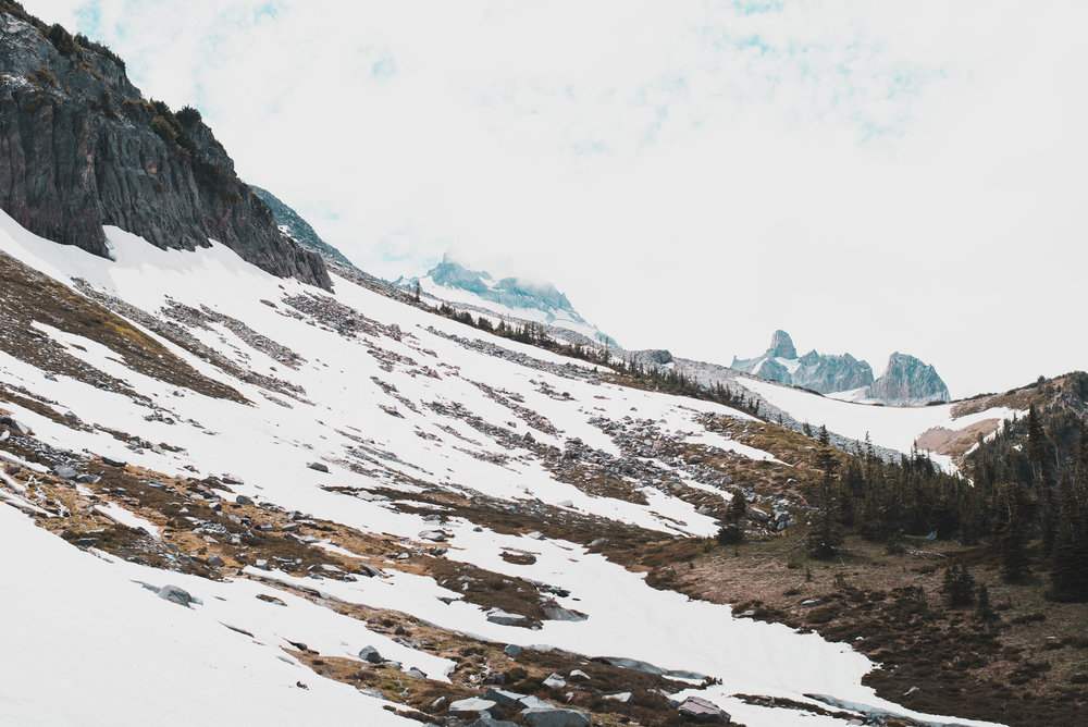 Summerland turns into Panhandle Gap at Mt. Rainier